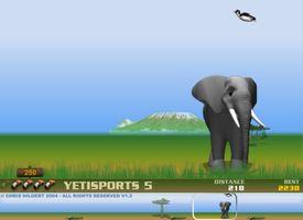 Yeti Sports 5